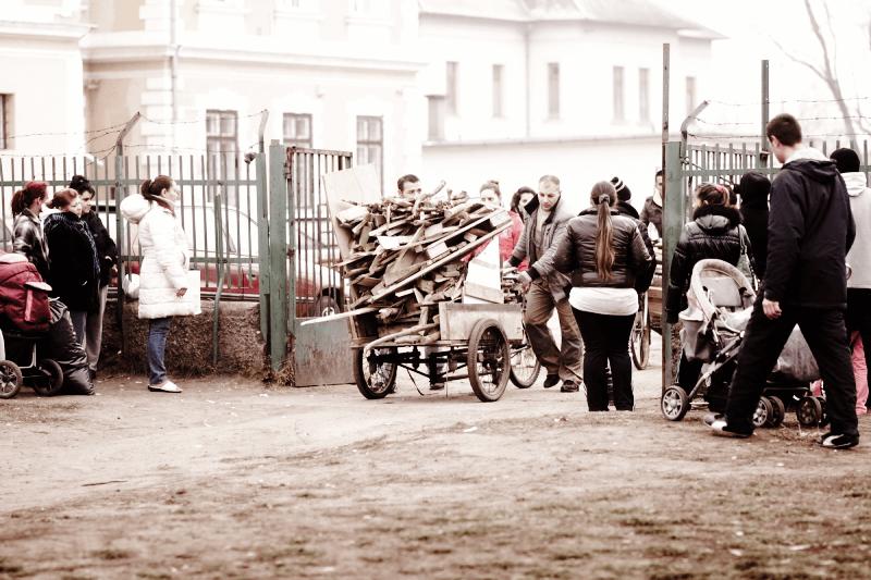 Roma gardening project