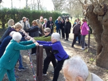 Inclusive cities healthy ageing