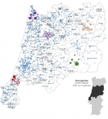 Figure 6: Industrial symbiosis map in the Centro region in Portugal
